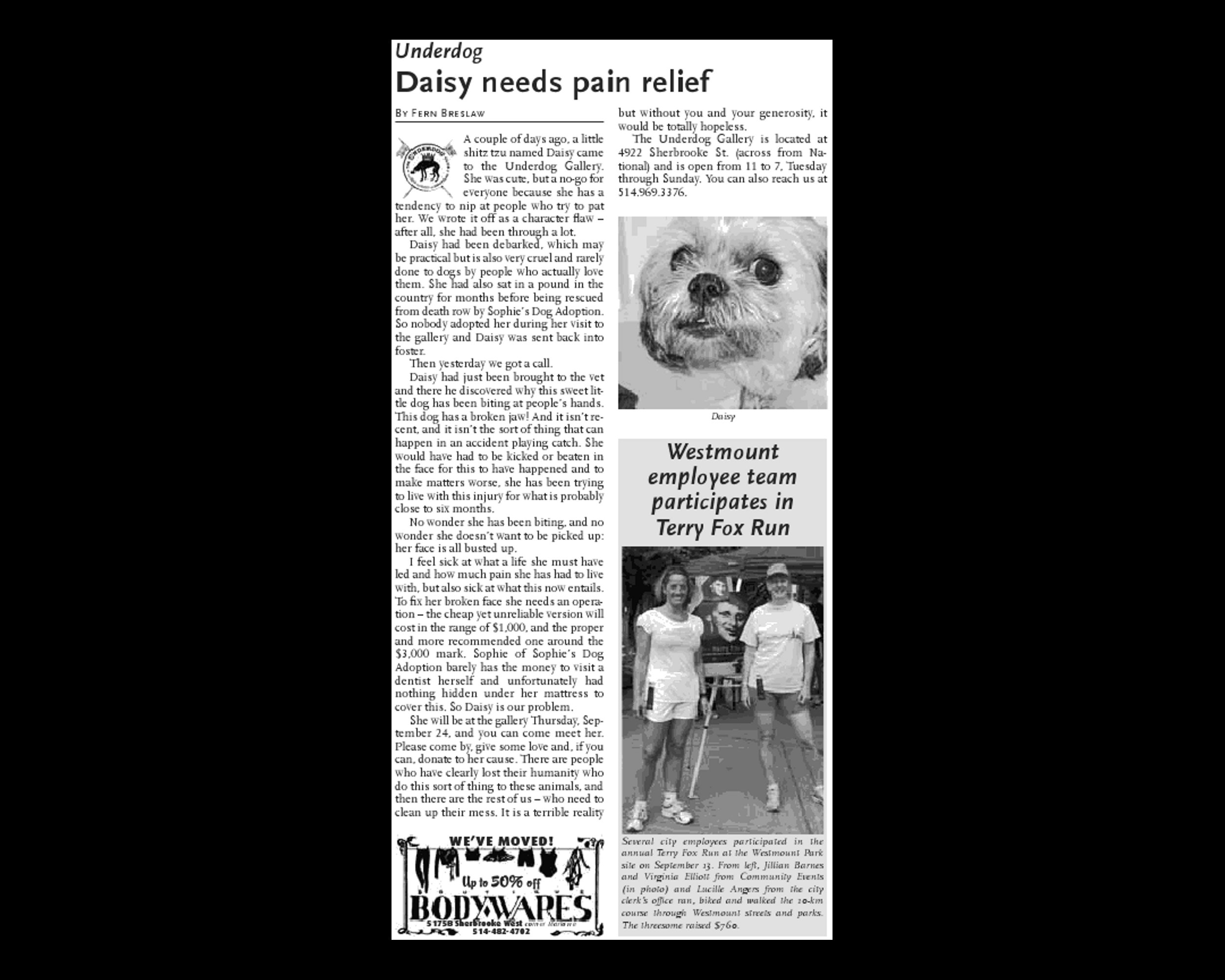 Daisy needs pain relief